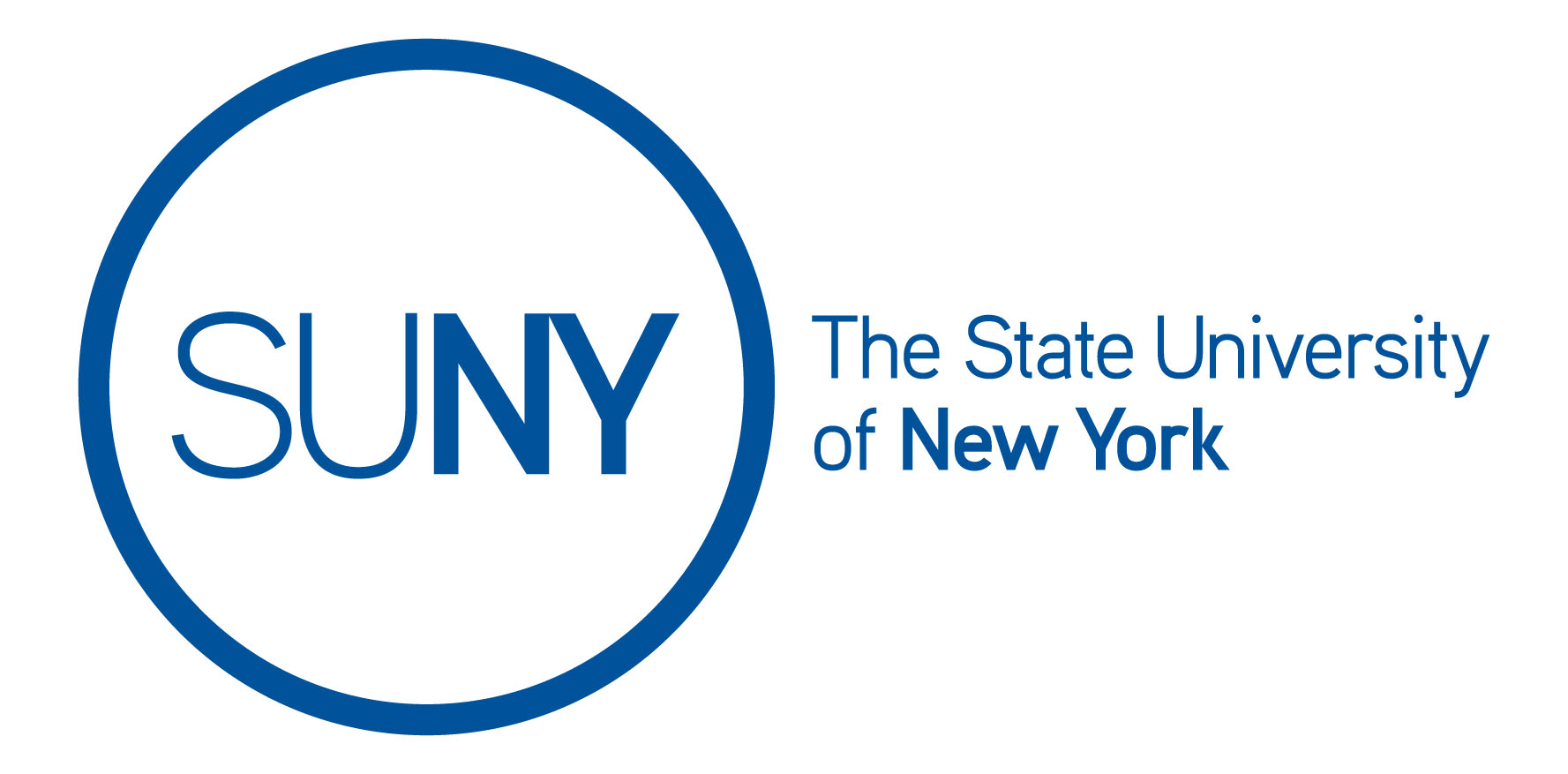 state university of new york dissertations The state university of new york (suny / ˈ s uː n iː /) is a system of public institutions of higher education in new york, united states it is one of the largest.